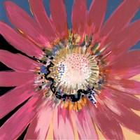 Sunshine Flower III Fine-Art Print