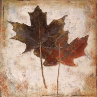 Natural Leaves IV Fine-Art Print