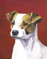 Dog Portrait-Jack Fine-Art Print