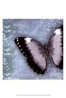 Butterfly Notes X Fine-Art Print