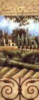 Villa In Tuscany Fine-Art Print