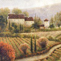 Tuscany Vineyard I Fine-Art Print