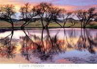 Lake Reflection Fine-Art Print
