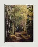 Woodland Path Fine-Art Print