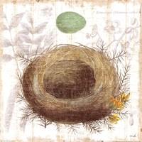 Botanical Nest II Fine-Art Print