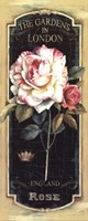 Garden View V Black Fine-Art Print