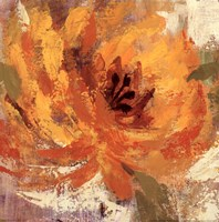 Fiery Dahlias I - Crop Fine-Art Print
