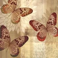 Tropical Butterflies I Fine-Art Print