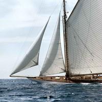 Sailing South Fine-Art Print