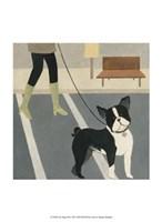 City Dogs III Fine-Art Print