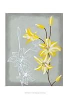 Floral Echo II Fine-Art Print