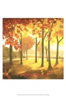 Golden October II Fine-Art Print