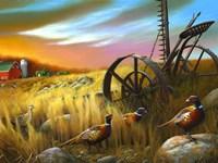 Pheasants I Fine-Art Print