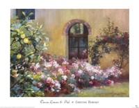 Tuscan Lemons And Pink Fine-Art Print