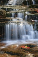 Waterfall Whitecap Stream Fine-Art Print