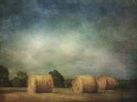 Hay Rolls Fine-Art Print