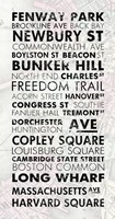 Boston Cities I Fine-Art Print