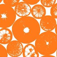 Orange Lemon Slices Fine-Art Print