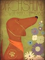 Dachsund Flower Market Fine-Art Print