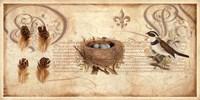 Nesting I Fine-Art Print