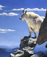 Rocky Mountain High Fine-Art Print