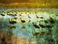 Cranes in Mist I Fine-Art Print