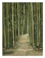 Bamboo Forest Fine-Art Print