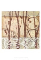 Small Willow and Lace III Fine-Art Print