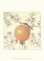 Orange and Botanicals Fine-Art Print