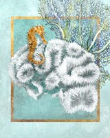 Coral and Seahorse Fine-Art Print