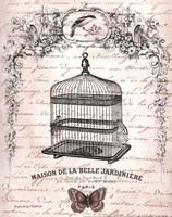 French Birdcage II Fine-Art Print