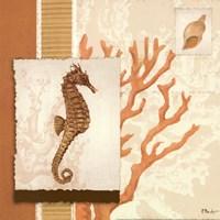 Aquarius Coral Sq II Fine-Art Print