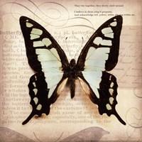 Butterflies Script I - mini Fine-Art Print