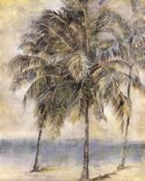 Palm Hammock II Fine-Art Print