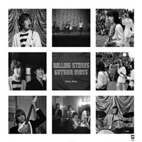 Rolling Stones Gather Moss Fine-Art Print