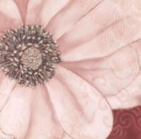 Grandiflora V Fine-Art Print
