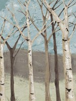 Blue Birches I Fine-Art Print