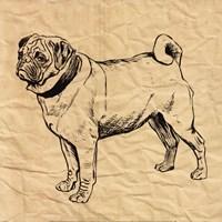 Pug Fine-Art Print