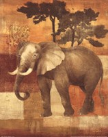 Animals on Safari IV Fine-Art Print