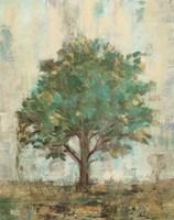 Verdi Trees I Fine-Art Print