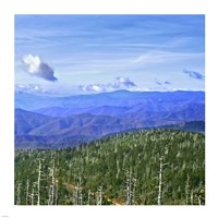 Great Smoky Mountains Fine-Art Print