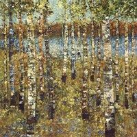 Purple Birch Fine-Art Print