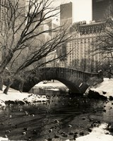 Gapstow Bridge NYC Fine-Art Print