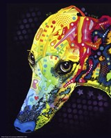 Greyhound Fine-Art Print