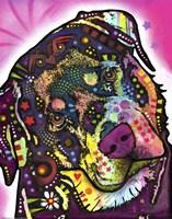 Rottie Fine-Art Print