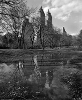 Central Park Reflections Fine-Art Print