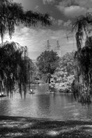 Central Park Lake HDR 1 Fine-Art Print