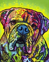 Hey Bulldog Fine-Art Print