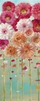 Daisies Spring I Fine-Art Print