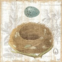 Botanical Nest III Fine-Art Print